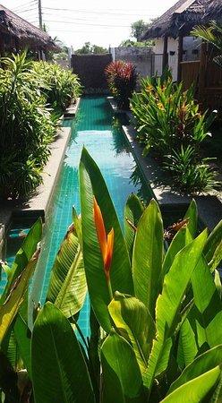 竹林天堂之家照片