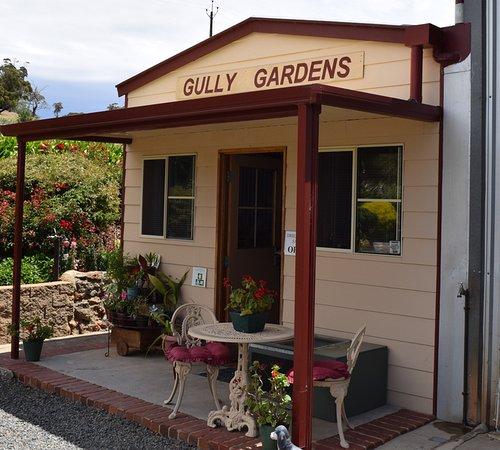 Gully Gardens