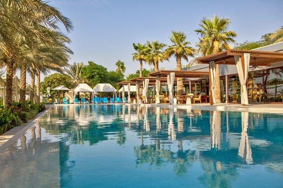 Desert Palm PER AQUUM 사진