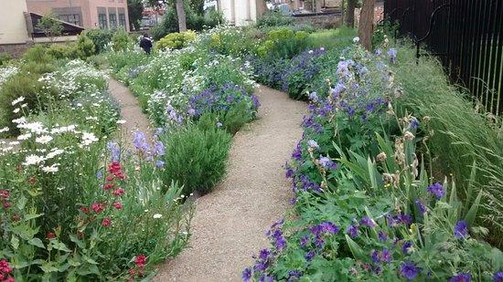 Rainham, UK: Terrace garden