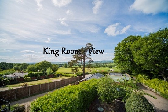 Raymonds Hill, UK: Suite Room