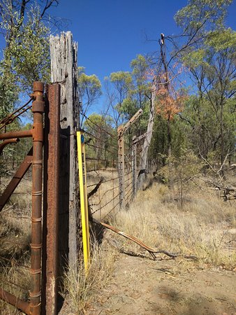Possum Park: Property fencing