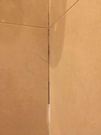 Killarney Royal: Mold/deteriorating caulking in the bathroom.