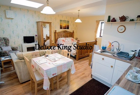 Netherleigh Bed and Breakfast : King Studio