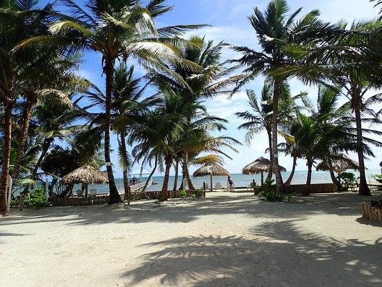 Cocotal Inn & Cabanas: Private 'beach' area.