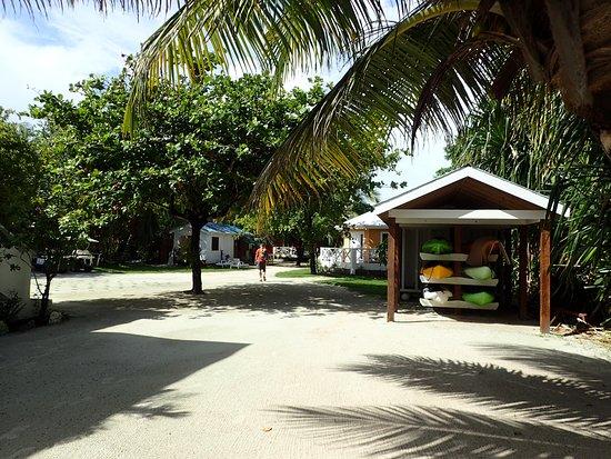 Gambar Cocotal Inn & Cabanas