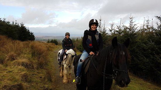 Bantry Pony Trekking: Out on the trail!