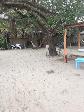 Junto Al Rio Beachfront Bungalows And Suites Photos Of