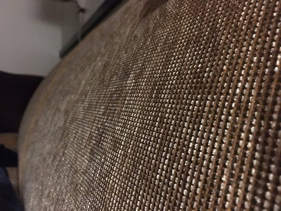 Hyatt Place Fort Myers at The Forum: Artistic pic of the couch