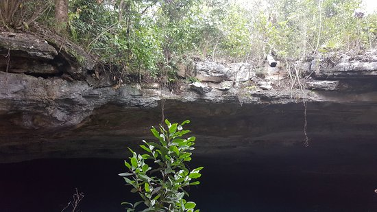 Ben's Cave Resmi