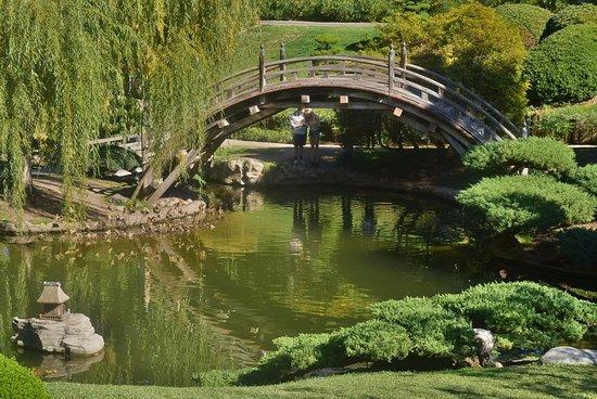 Ponte - Página 2 Japanese-gardens