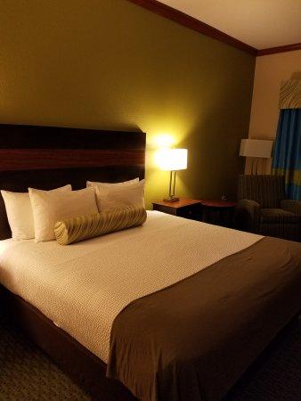 Best Western Plus Woodway Waco South Inn & Suites: 20161226_232055_large.jpg
