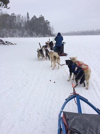 Wintergreen Dogsled Lodge: Its an adventure!