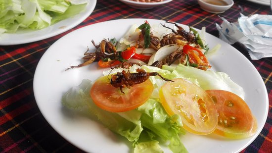 Luong Son (Bo Tung Xeo): Fried Crickets