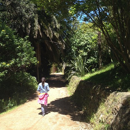 Waiheke-eiland, Nieuw-Zeeland: Little Oneroa, Waiheke Island