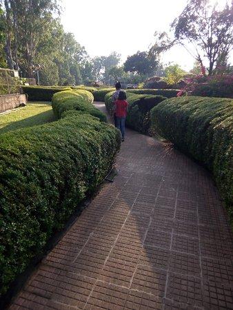 Chiplun, Indie: Neharu garden, Koynanagar