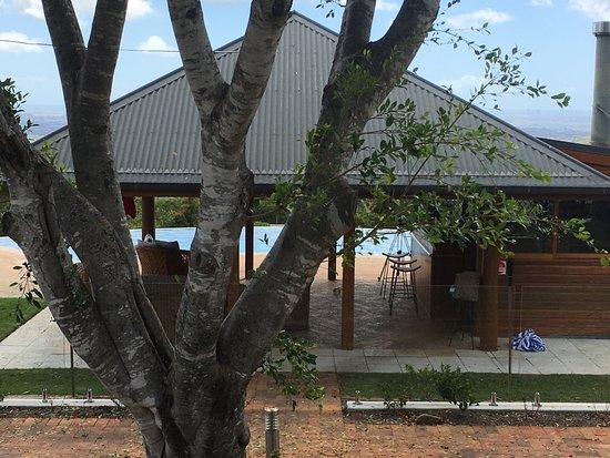 Willow Vale, Australië: Bar & Pool area