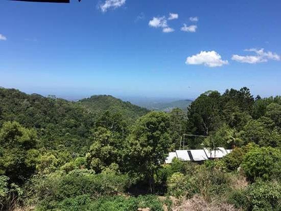 Mount Glorious, Australia: FB_IMG_1483079503225_large.jpg