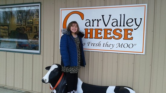 Mazomanie, WI: Carr Valley Cheese