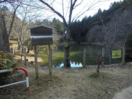 Hatago Pond