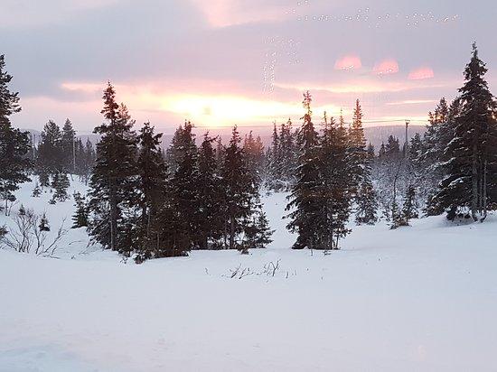 Lapland Hotel Pallas: 20161227_130655_large.jpg