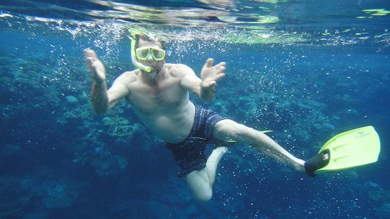 The Wilderness Lodge: Snorkeling at coral gardens