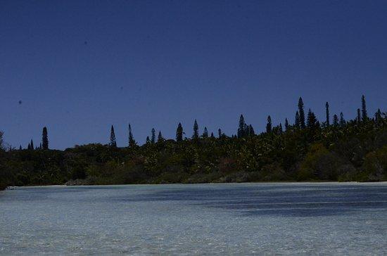 Oro Bay : Bahia de Oro