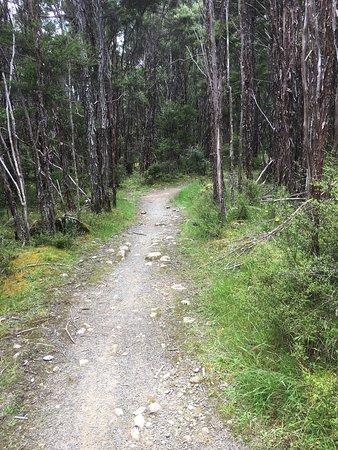 Nelson-Tasman Region, New Zealand: photo3.jpg