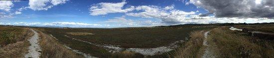 Pokeno, New Zealand: photo3.jpg
