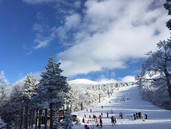 Yamagata Zao Onsen Ski Resort