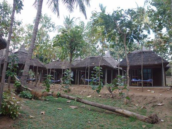 Shanthi Guesthouse Photo