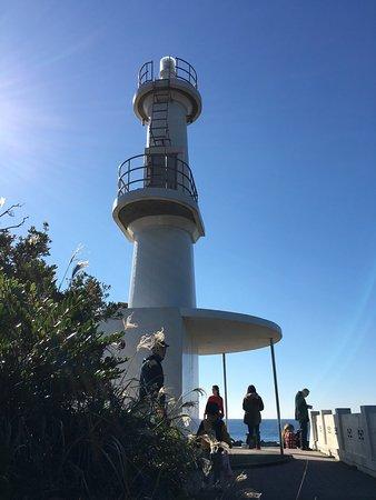 Ichikikushikino, Japan: 海がとてもきれいで天気が良かったせいか透視度10mを超えていたのではないでしようか。南国情緒あふれる素敵な場所でした。