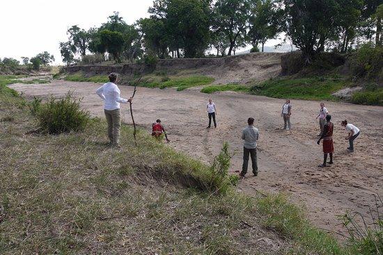 Olderkesi Private Reserve, Kenya: Christmas Eve dung ball!