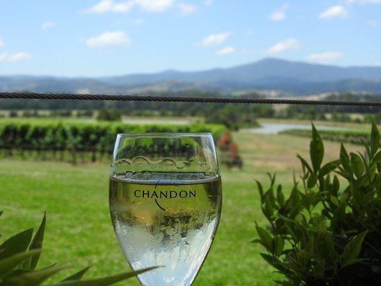 Australian Wine Tour Company: Domain Chandon (Yarra Valley)