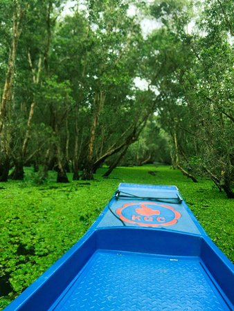 Active Travel Asia: Tra Su forest
