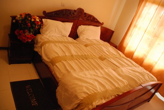 Dib Anbessa: Twin Room with Free Wifi, complimentary Break Fast, private Hot & Cold Shower Price $ 24