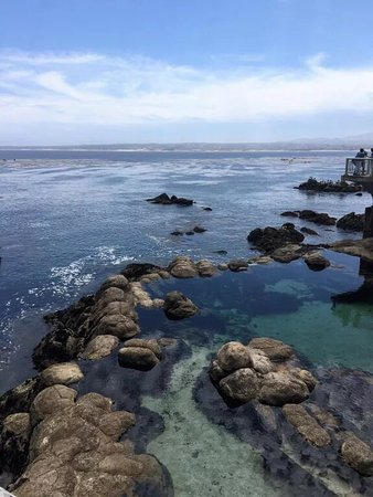 Monterey, CA: photo1.jpg