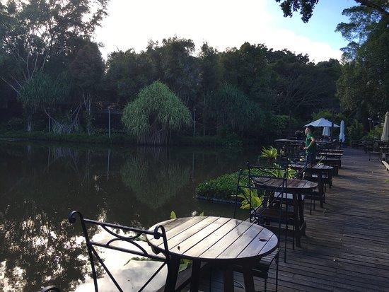 Sepilok, Malaysia: photo3.jpg