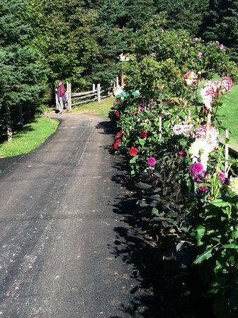 New Glasgow, Canadá: Gardens of Hope
