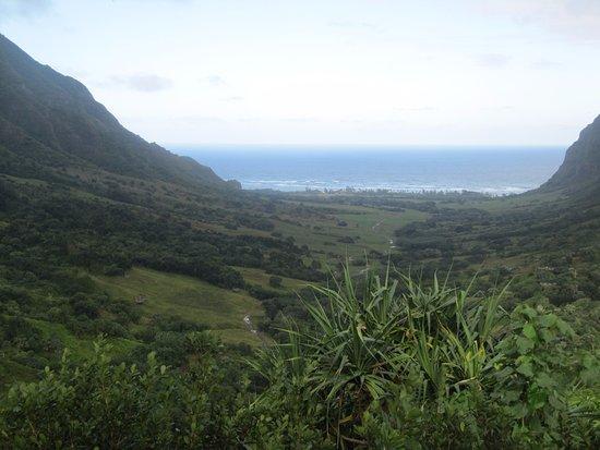 Kaneohe, Hawái: Scenic views