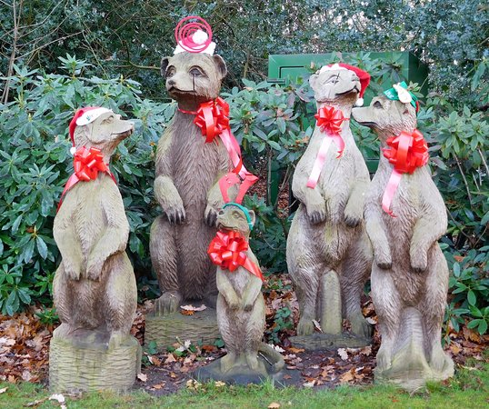 The Mere Golf Resort and Spa: Festive meerkats!