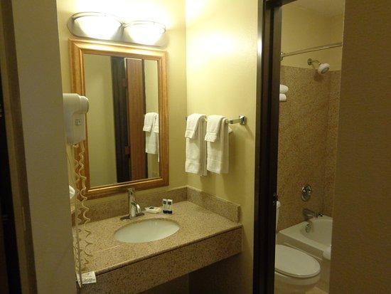Willmar, Minnesota: granite vanity & shower