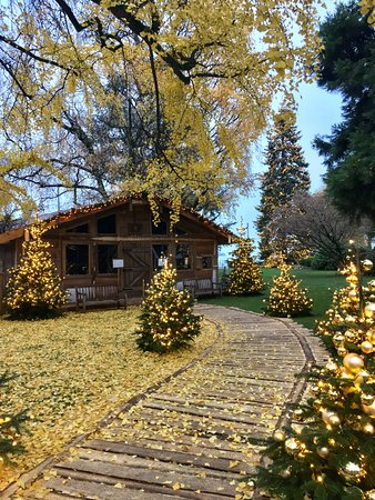 Baur au Lac: The hotel's park filled with Christmas decor (late-November)