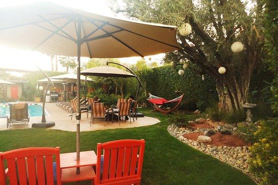 Desert Riviera Hotel: Try the hammock, so relaxing