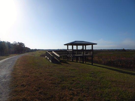 Ocklawaha, FL: Observation pavilion