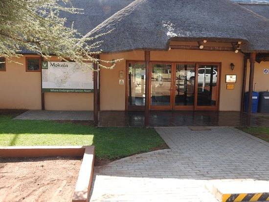 Northern Cape, Afrika Selatan: Rezeption