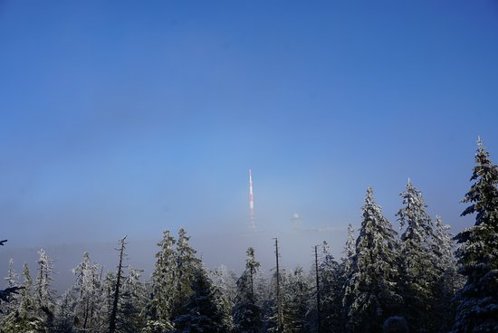Harz National Park: DSC04288_large.jpg