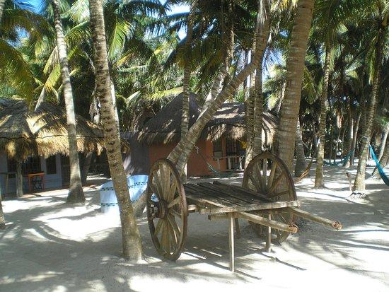 Zamas : Manicured jungle with cabanas