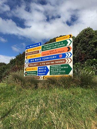 New Plymouth, Yeni Zelanda: photo3.jpg