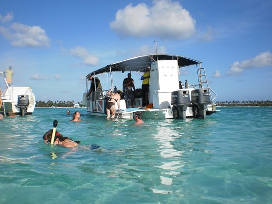 Bayahibe, สาธารณรัฐโดมินิกัน: StarFish pool